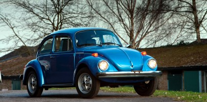 ACPA Beetle